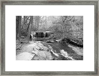 Walk To The Waterfall Framed Print