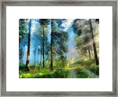 Walk Towards Spring Framed Print by Georgiana Romanovna