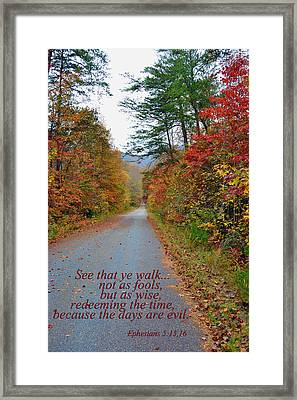 Walk Wisely Framed Print by Larry Bishop