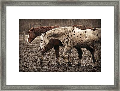 Walk With Me Framed Print by Carey Dils