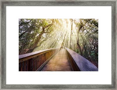Walk With Me Framed Print by Debra and Dave Vanderlaan
