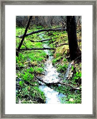 Walk With The Faries Framed Print by Allyson Andrewz