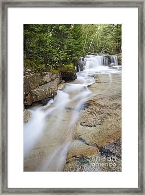 Walker Brook Cascades - Franconia Notch State Park New Hampshire Framed Print by Erin Paul Donovan
