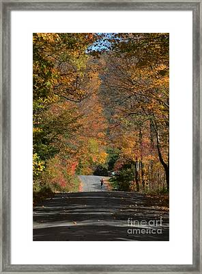 Walking A Country Road Framed Print