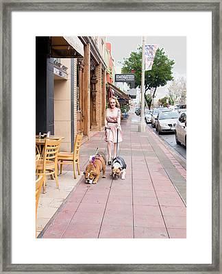 Walking Adorabulls Framed Print by Beth Wickham