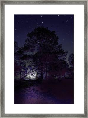 Walking At Night Framed Print by Nina Fosdick