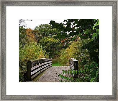 Walking Bridge Framed Print