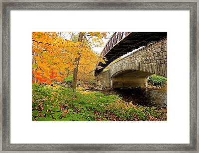 Framed Print featuring the photograph Walking Bridge In Fall by Amazing Jules