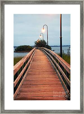 Walking Bridge Framed Print