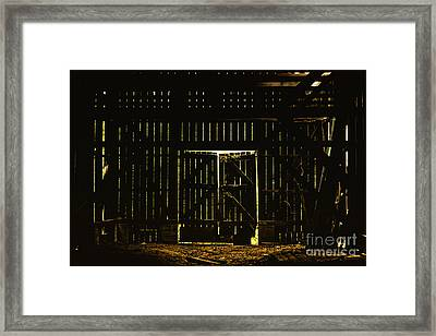 Walking Dead Framed Print by Andrew Paranavitana