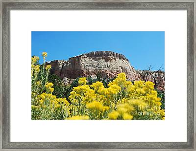 Framed Print featuring the photograph Walking Ghost Ranch by William Wyckoff