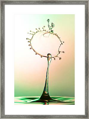 Walking Hen Form Made With Waterdrops Collision Framed Print by Jaroslaw Blaminsky