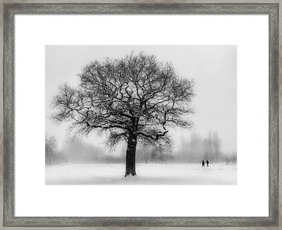 Walking In A Winter Wonderland Framed Print by Ian Hufton