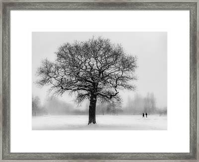 Walking In A Winter Wonderland Framed Print by Ian Hufton