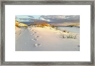 Walking In Destin Framed Print