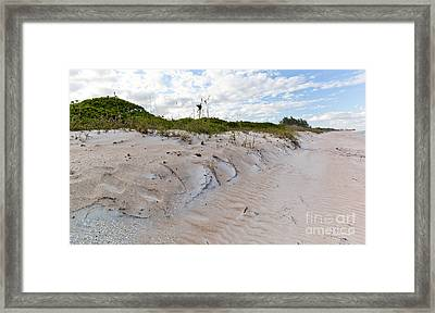 Walking In The Sand Framed Print by Michelle Wiarda
