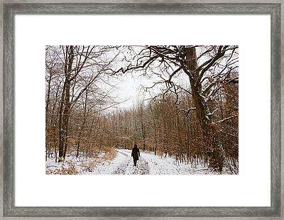 Walking In The Winterly Woodland Framed Print