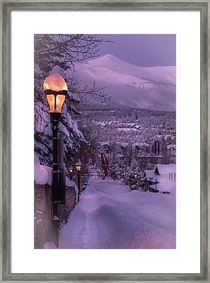 Walking In Winter Framed Print