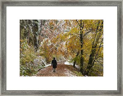 Walking Into Winter - Beautiful Autumnal Trees And The First Snow Of The Year Framed Print by Matthias Hauser