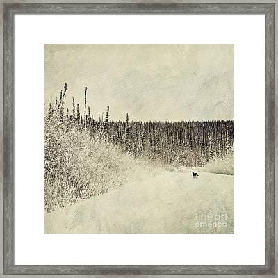 Walking Luna Framed Print by Priska Wettstein