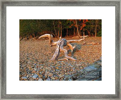 Walking On The Beach Framed Print by Leone Lund