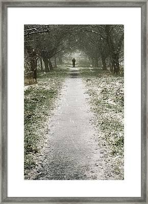 Walking On The Winter Path Framed Print by Svetlana Sewell