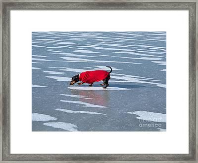 Walking On Water Framed Print by Ann Horn