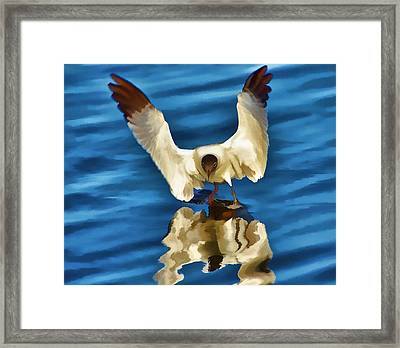 Framed Print featuring the photograph Walking On Water by Pamela Blizzard