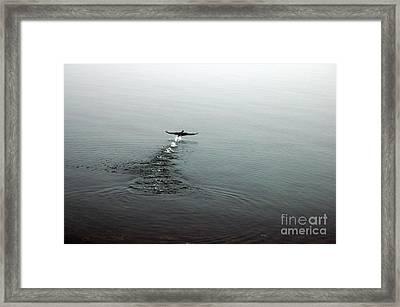 Walking On Water Framed Print by Randi Grace Nilsberg