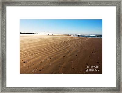 Walking On Windy Beach. Framed Print