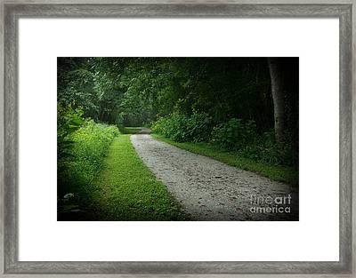 Walking Path Framed Print