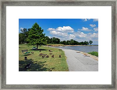 Walking The Delaware Framed Print by Skip Willits