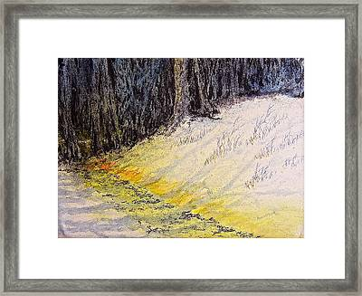 Walking The Shadowed Path Framed Print by Carolyn Rosenberger