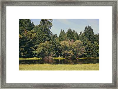 Walking Through The Grass Framed Print by Laurie Search