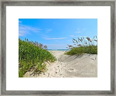 Walking Through The Sea Oats Framed Print