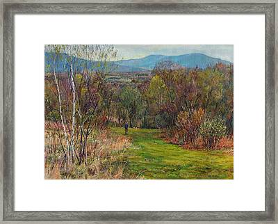 Walking Through The Woods In Spring Framed Print