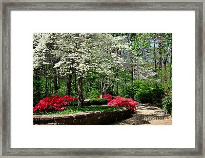 Walking To The Chapel Framed Print by Nava Thompson