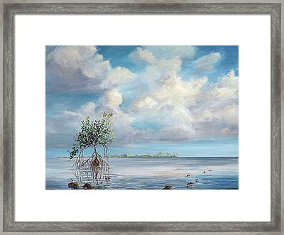 Walking Tree Framed Print