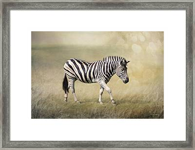 Walking With The Sun Framed Print