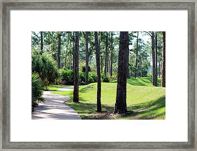 Walkway At The Gardens Framed Print