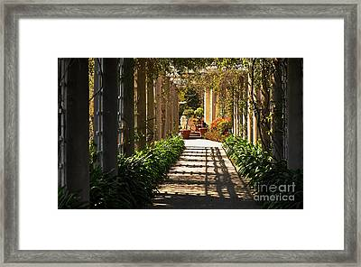 Walkway Framed Print by Debby Pueschel