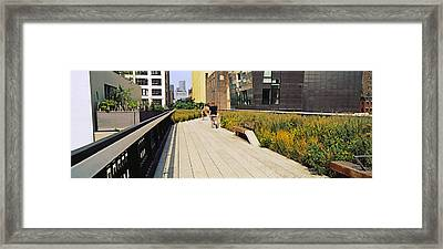 Walkway In A Linear Park, High Line Framed Print