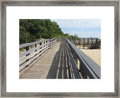 Walkway To Jockeys Ridge  Framed Print by Cathy Lindsey