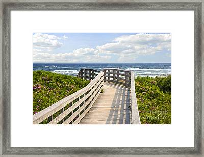 Walkway To Ocean Beach Framed Print by Elena Elisseeva