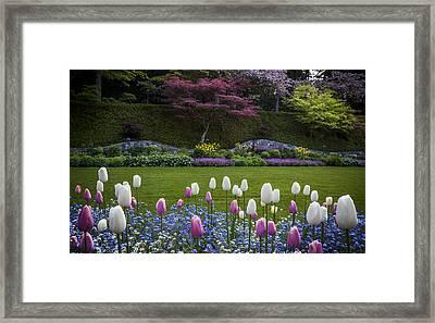Wall At Bouchart Gardens Framed Print