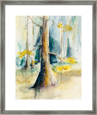 Wall Doxey 3 Framed Print