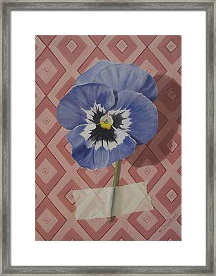 Wall Flower IIi Framed Print