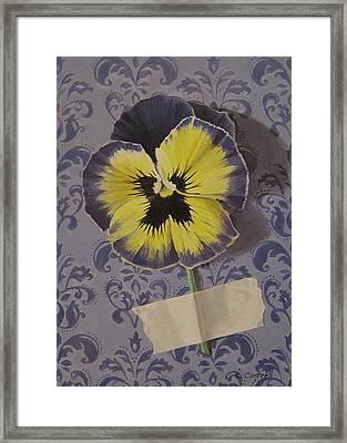 Wall Flower Iv Framed Print