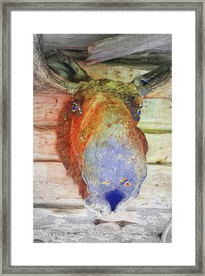 When The Wall Is Looking Back At You  Framed Print by Hilde Widerberg
