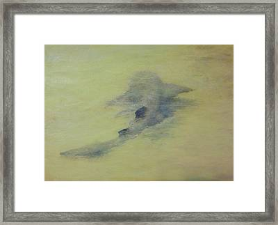 Wall Shark Framed Print